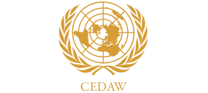 cedaw2_1.png